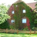 Fenster Golden Oak